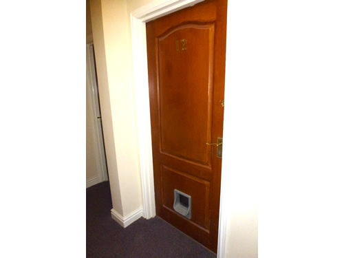 Cat flap in fire door